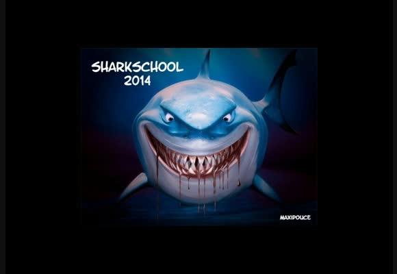 Sharkschool SEMAINE 1