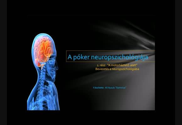 A póker neuropszichológiája 1. rész - A motorháztető alatt