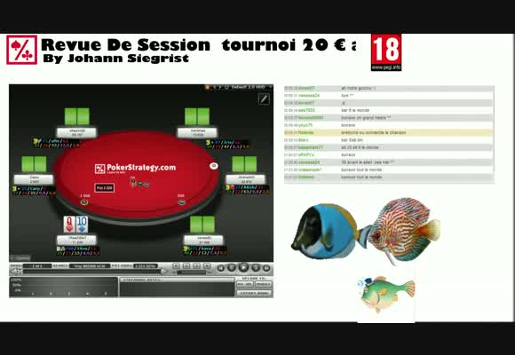 Revue de session tournoi 20€