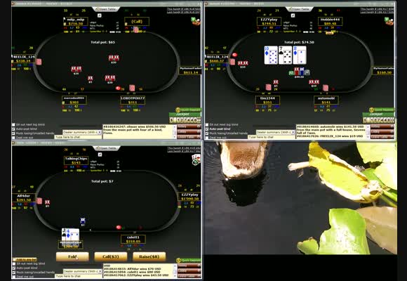 Fixed Limit $5/$10 & $10/$20 Shorthanded - Live